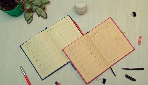 Страницы индивидуального ежедневника