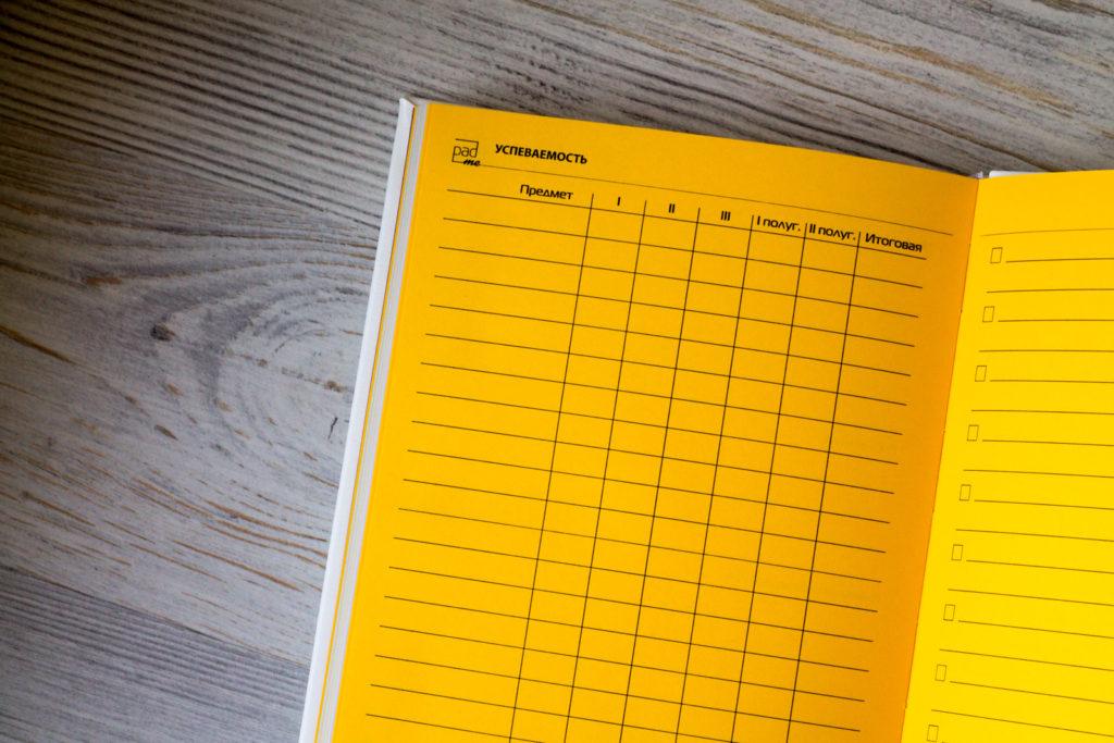 Дневник для школьницы